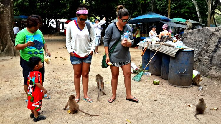 Monkey Fedding
